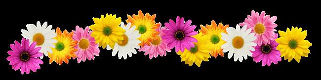 Resultado de imagem para barra de flores