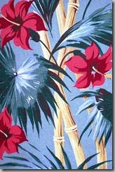 hibiscus blog 3