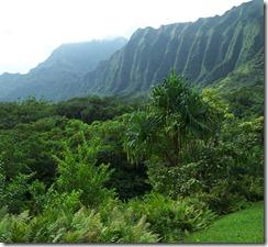 Oahu 208 copy