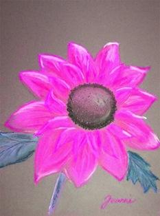 sunflowerPINK