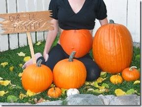 pumpkin pregnant