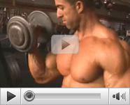 Work Out Bodybuilding Video Tube