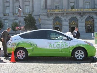algae powered car