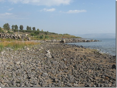 Sea of Galilee Shoreline 4
