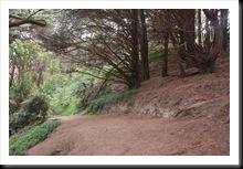 Get off the road - Mt Victoria jako zewnętrzny Shire