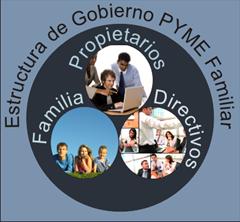 Estructura de Gobierno PYME