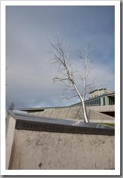 Sculpture Park-42