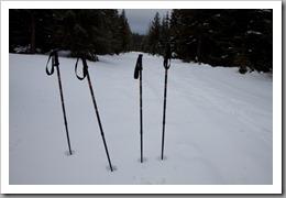 Snowshoeing-25