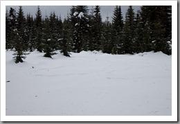 Snowshoeing-69