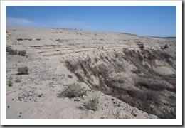 White Bluffs Hike-250