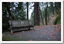 Oregon Waterfalls-100