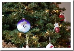Nguyen Christmas-2