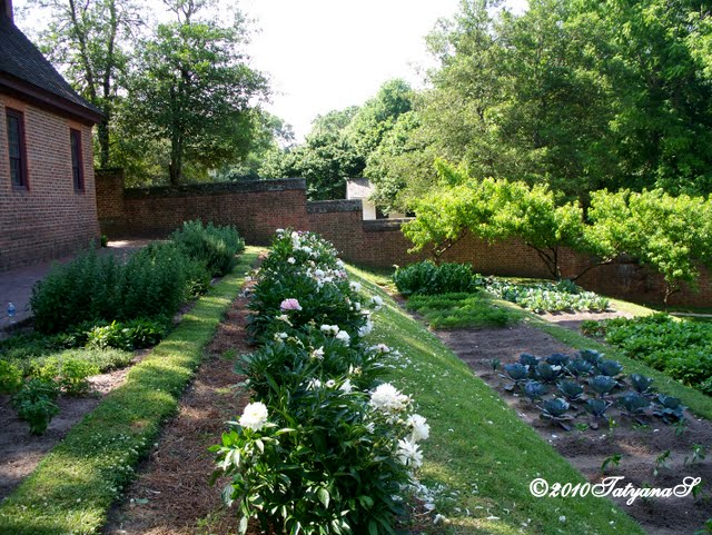 Mysecretgarden colonial gardens part 3 williamsburg for Garden design 18th century