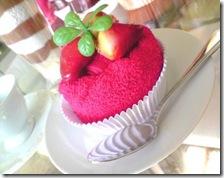 candycake04