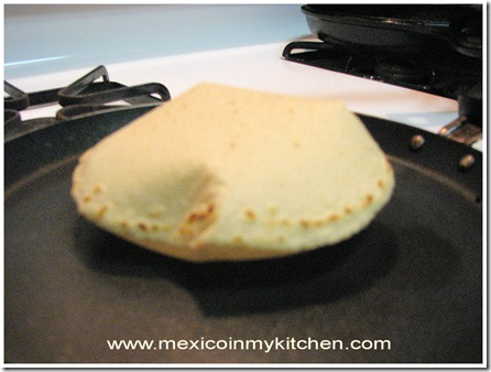how to make corn tortillas-9