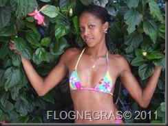 dilicia (20)