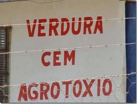 erro-de-portugues-4971