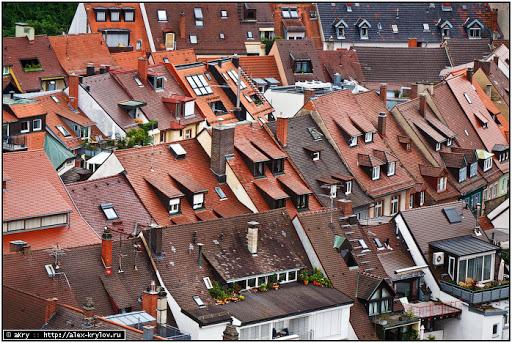 Germany : Schwarzwald : Freiburg : Munster