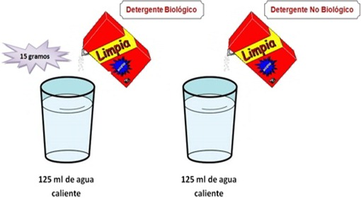 detergentes biologicos