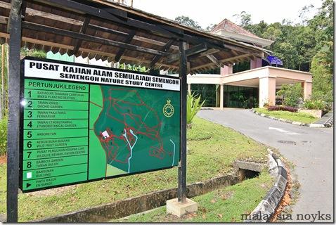 Semengoh Orangutan Rehabilitation Center 27