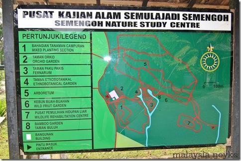 Semengoh Orangutan Rehabilitation Center 28