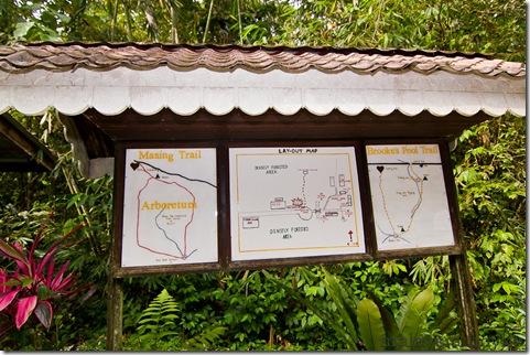 Semengoh Orangutan Rehabilitation Center 2