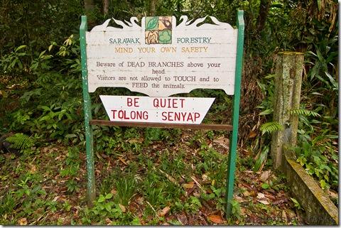 Semengoh Orangutan Rehabilitation Center 30