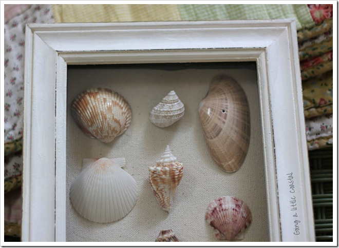 shells4