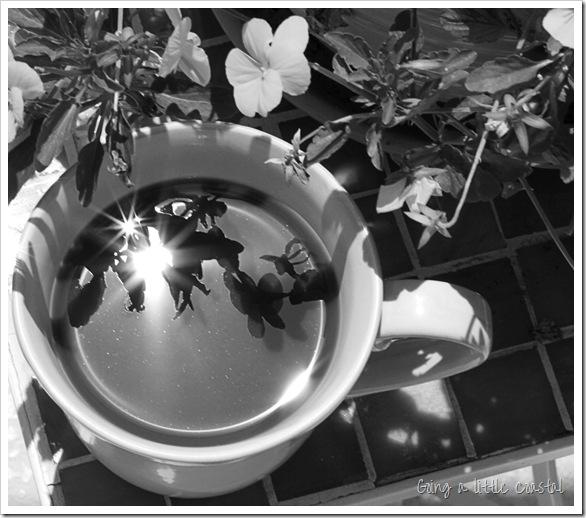 coffeeflare3bw_edited-1