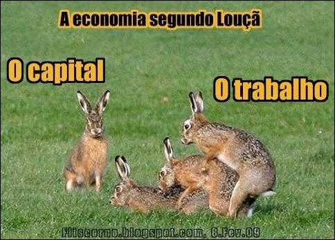 coelhos do louca