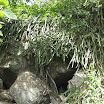chinh-phuc-nui-ba-3.jpg