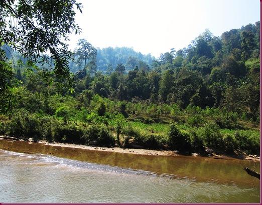 mae taeng elephant park mae taeng river