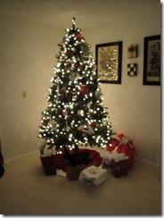 December 2009 045
