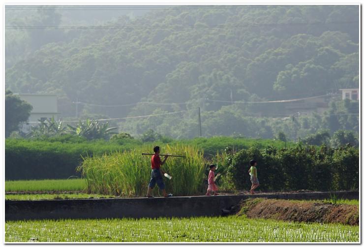 農業的生活(CZJ 200)