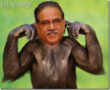 monkey - Prachanda-Paranjaya