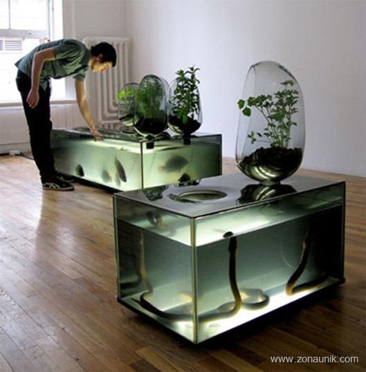 aquarium08