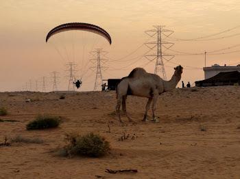 aventura  77  Arabia Saudí: La gran aventura con Vuela+