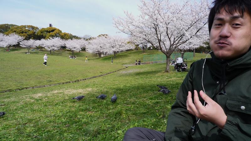 Takahin, potione, たかひん, hanami, 花見, 2009, Kasuga, 春日, parque, park, 公園, taiyaki, たいやき