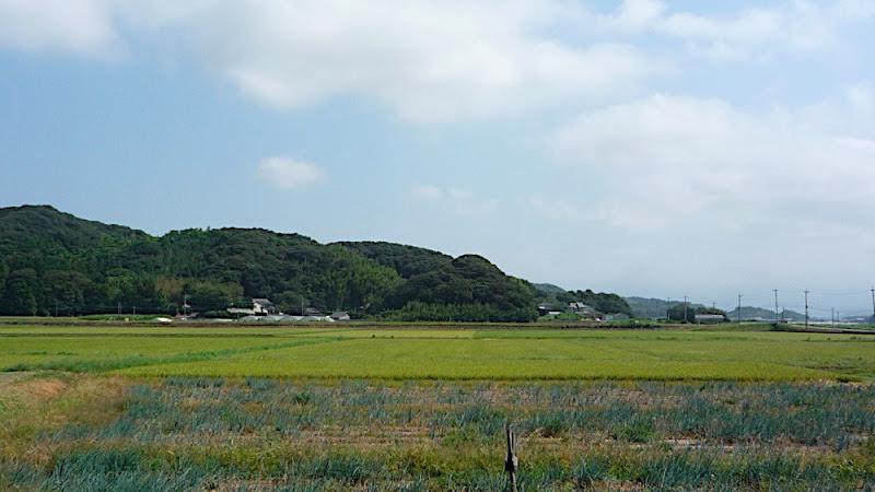 Itoshima, 糸島, cafe, カフェ