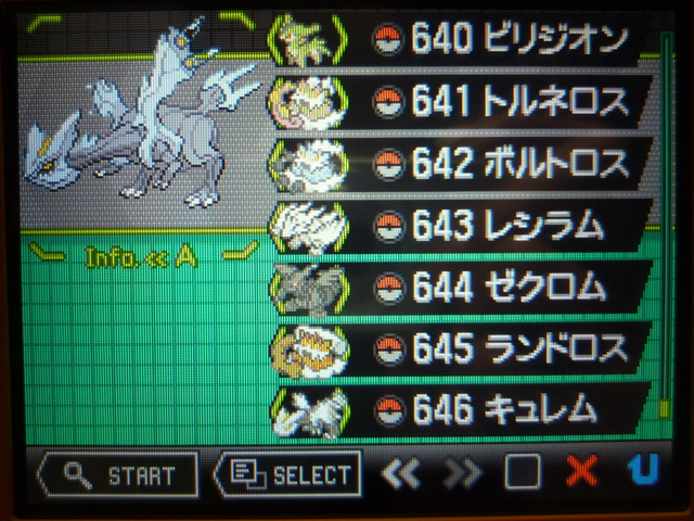 Pokemon Black White ポケモン ブラック ホワイト