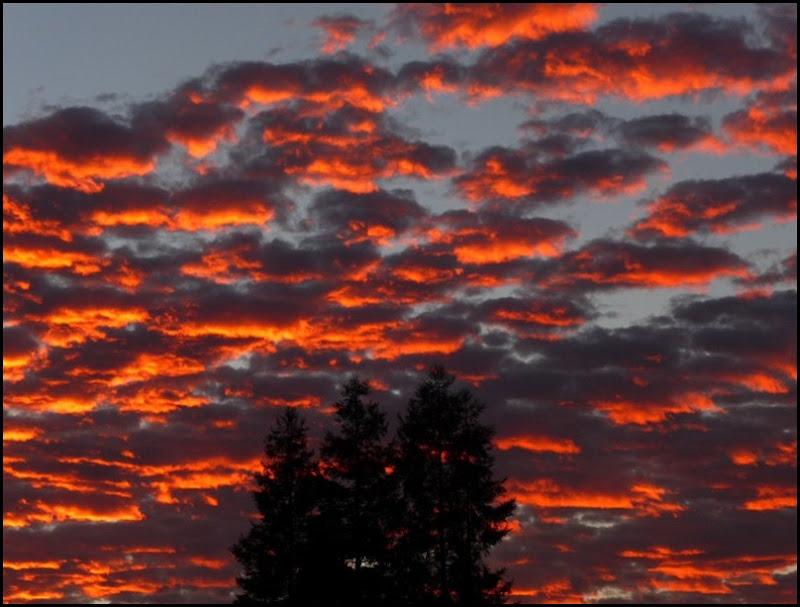 sunrise 005 (800x600)