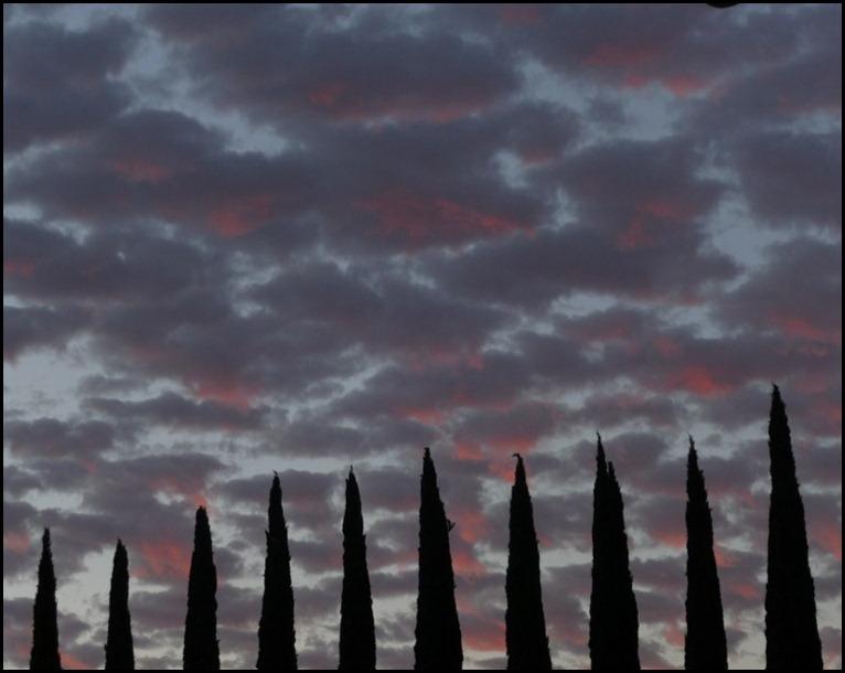 sunrise 015 (800x600)