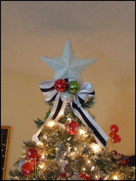 christmas 12-15-2010 048