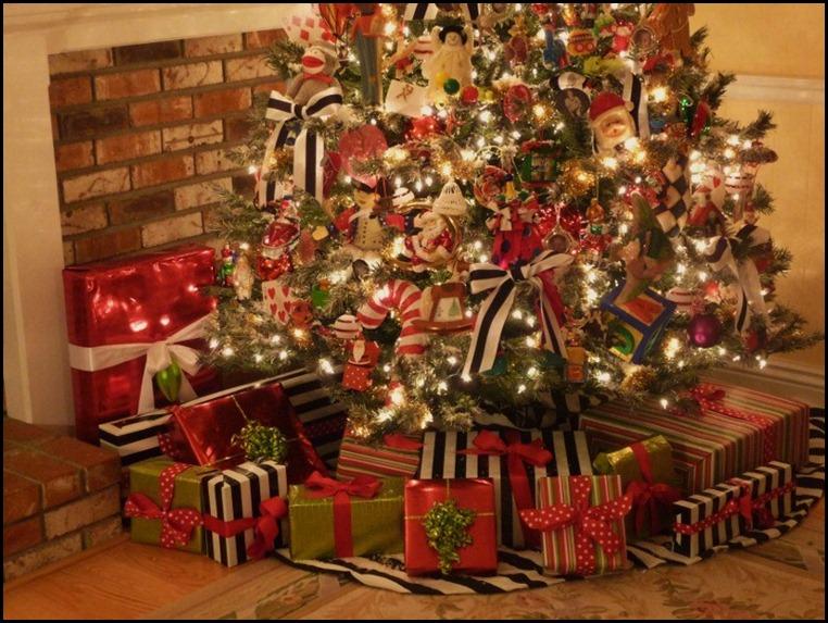 Blog Christmas 2010 022 (800x600)