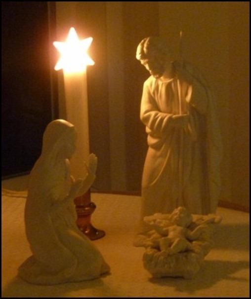 Blog Christmas 2010 051 (800x600)