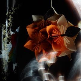 Mistery fog by Loredana Gancea - Abstract Light Painting ( mistery, fog, paper, dark, flower,  )