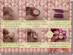 TUTO CANE ORCHIDEE PAGE 3