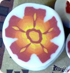 Cane Sunset Flower 1 - Avril 2011
