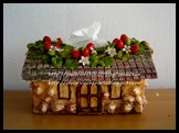 Strawberry Tissue Box 002 (2)