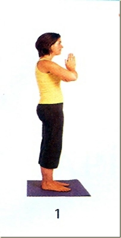 Yoga tipo 9 mudra 1